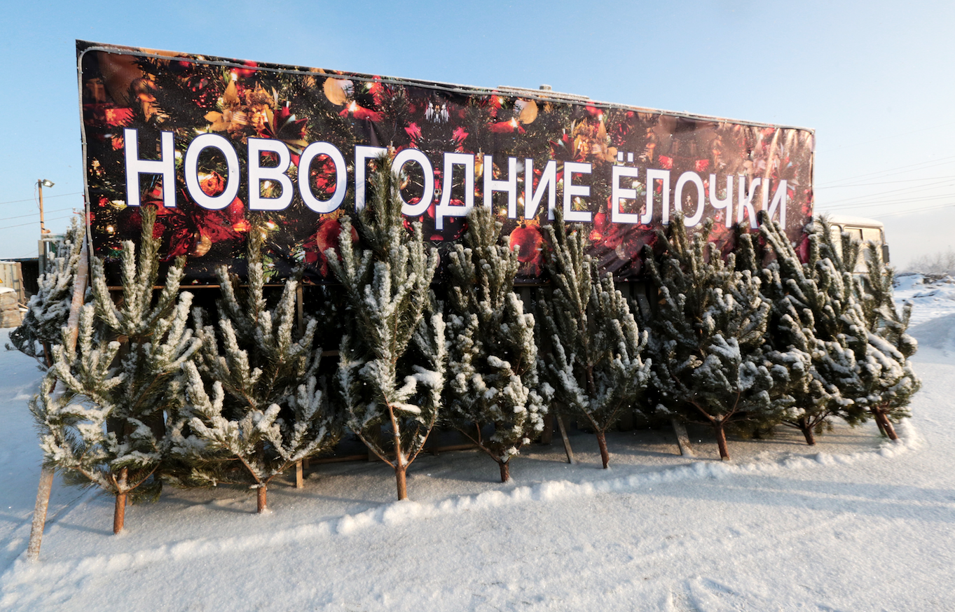 "<p>Фото: &copy; РИА ""Новости"" /&nbsp;Ростислав Нетисов</p>"