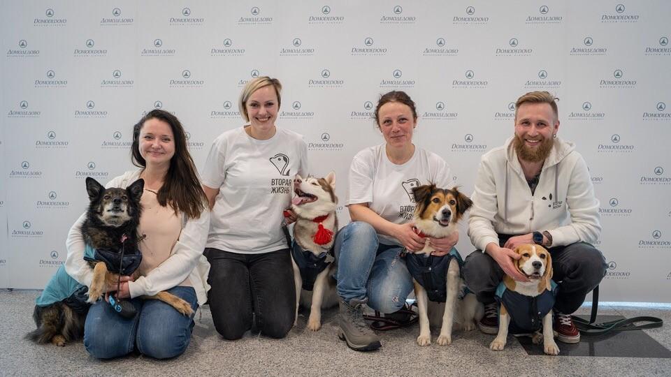 """<p>Собаки, участвовавшие в первой акции """"Обними друга перед полетом"""", и их воспитатели. Фото: © vk.com/dme.aero</p>"""