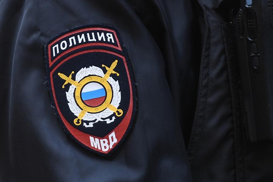 <p>Фото: © РИА Новости / Владимир Астапкович</p>