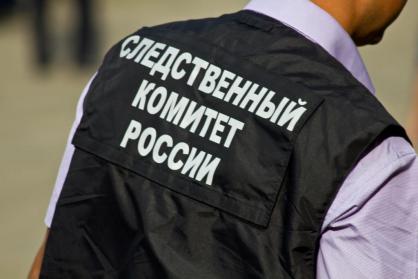 "<p>Фото © <a href=""http://mosobl.sledcom.ru/news/item/1366062/"" target=""_self"">ГСУ СКР</a></p>"