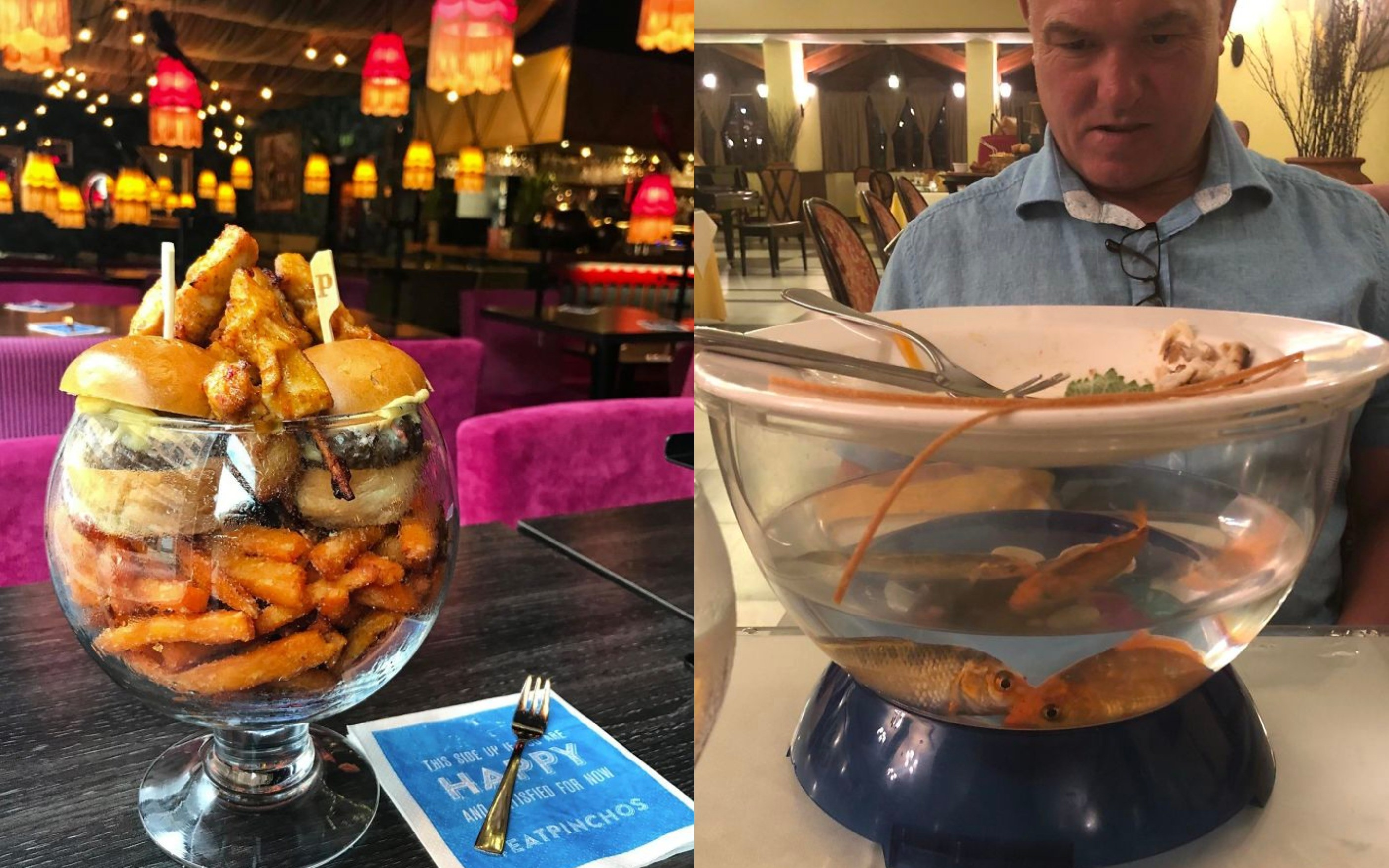 """<p>Фото © Reddit / <a href=""""https://old.reddit.com/r/WeWantPlates/comments/7sebyn/i_put_fries_in_an_enclosed_bowl_so_they_steam_and/"""" target=""""_self"""">WeWantPlates</a>, Reddit / <a href=""""https://old.reddit.com/r/WeWantPlates/comments/blcey9/fish_are_friends_not_food/?ref=share&ref_source=link"""" target=""""_self"""">dr_harlequin</a></p>"""