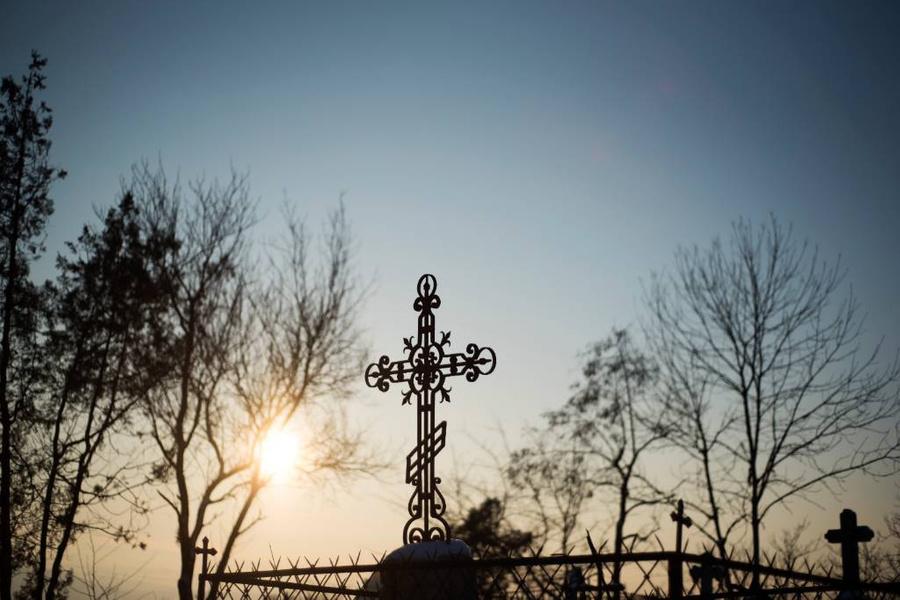 <p>Фото © ТАСС / Антон Подгайко</p>