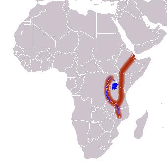 Схема расположения Восточно-Африканской рифтовой долины. Фото © Википедия