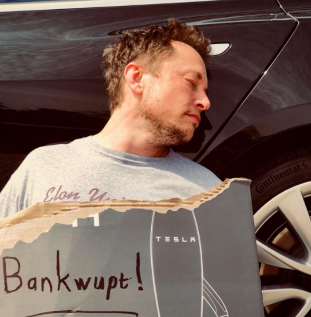 Фото © Twitter / Elon Musk