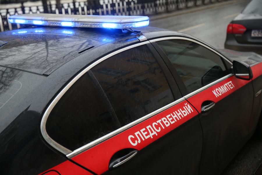 <p>Фото © ТАСС / Василий Кузьмичёнок</p>
