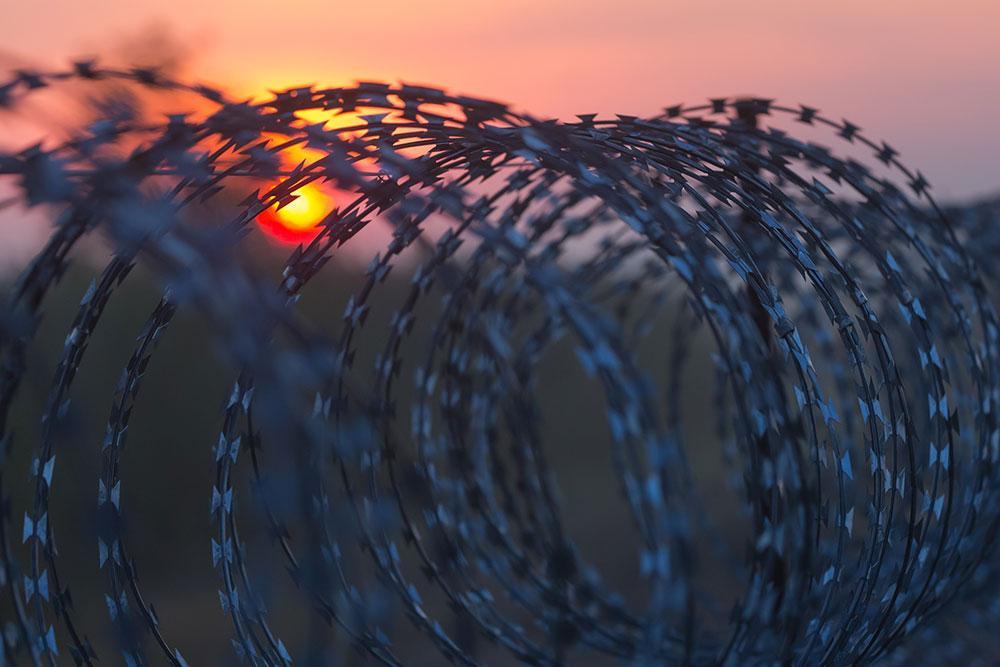 <p>Фото © Attila Volgyi / Xinhua via ZUMA Wire</p>