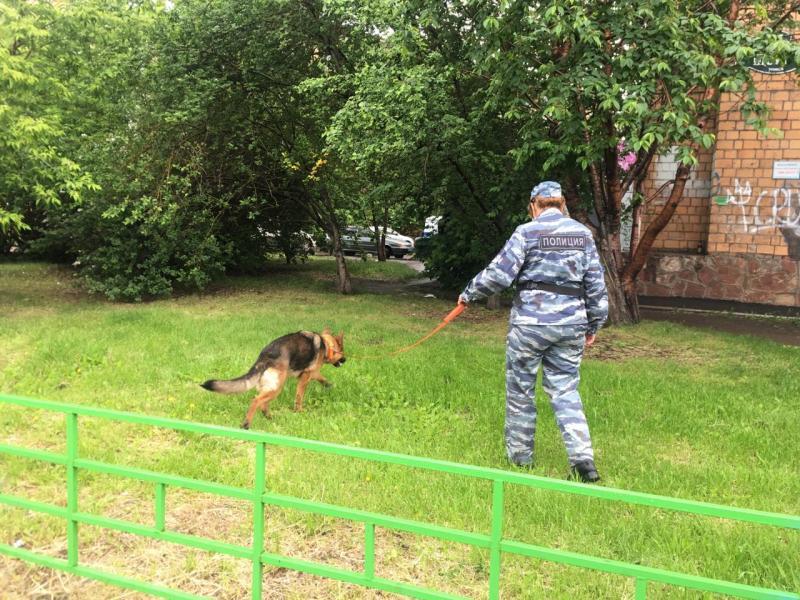 Фото © ГУ МВД РФ по Красноярскому краю