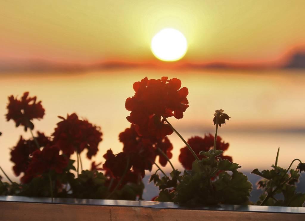 В Гидрометцентре предупредили о повышенном солнечном излучении в России