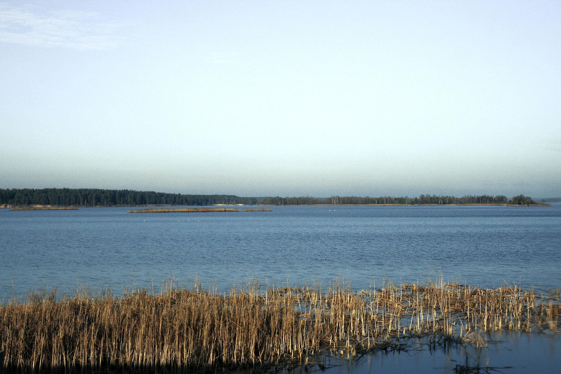 Вилейское водохранилище. Фото © Wikipedia