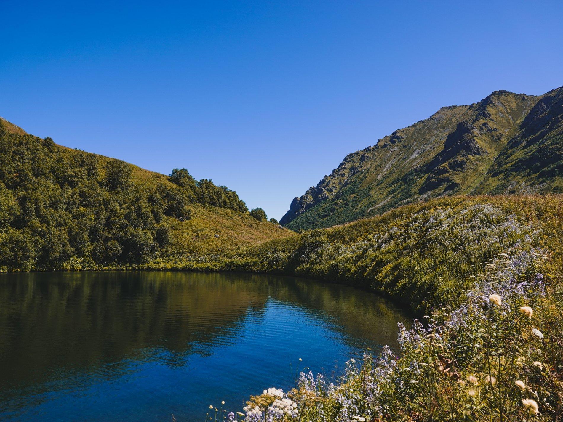 Так выглядело озеро год назад. Фото © Кавказский государственный природный биосферный заповедник имени Х.Г. Шапошникова