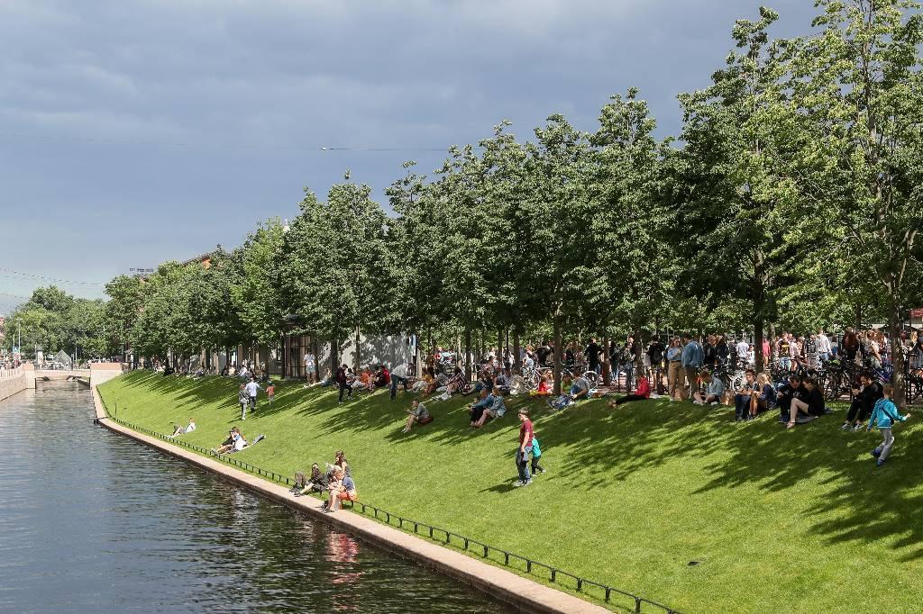 В Петербурге разрешили с 27 июля посещать леса и лесопарковые зоны