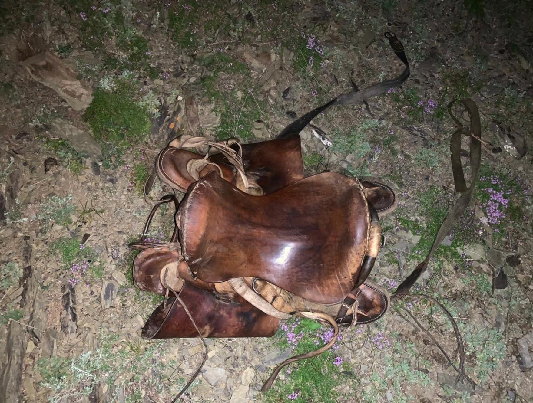 В Туве лошадь протащила выпавшего из седла мальчика по земле. Ребёнок погиб