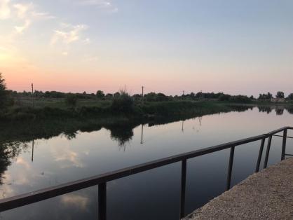 В Саратовской области 12-летняя девочка отправилась гулять с подружкой и утонула в пруду