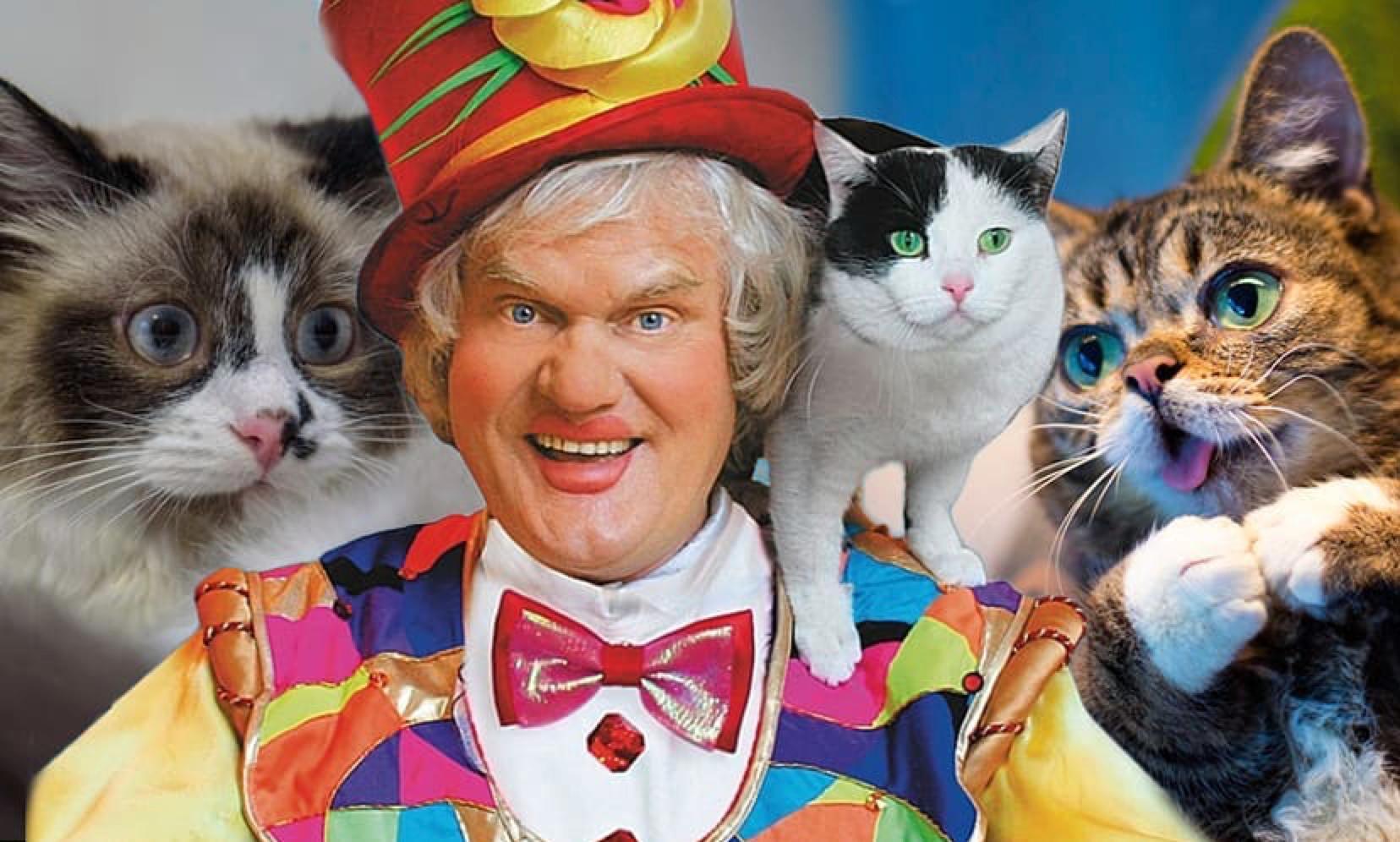 Куклачёв ответил на вопрос, можно ли надолго оставлять кошек дома одних