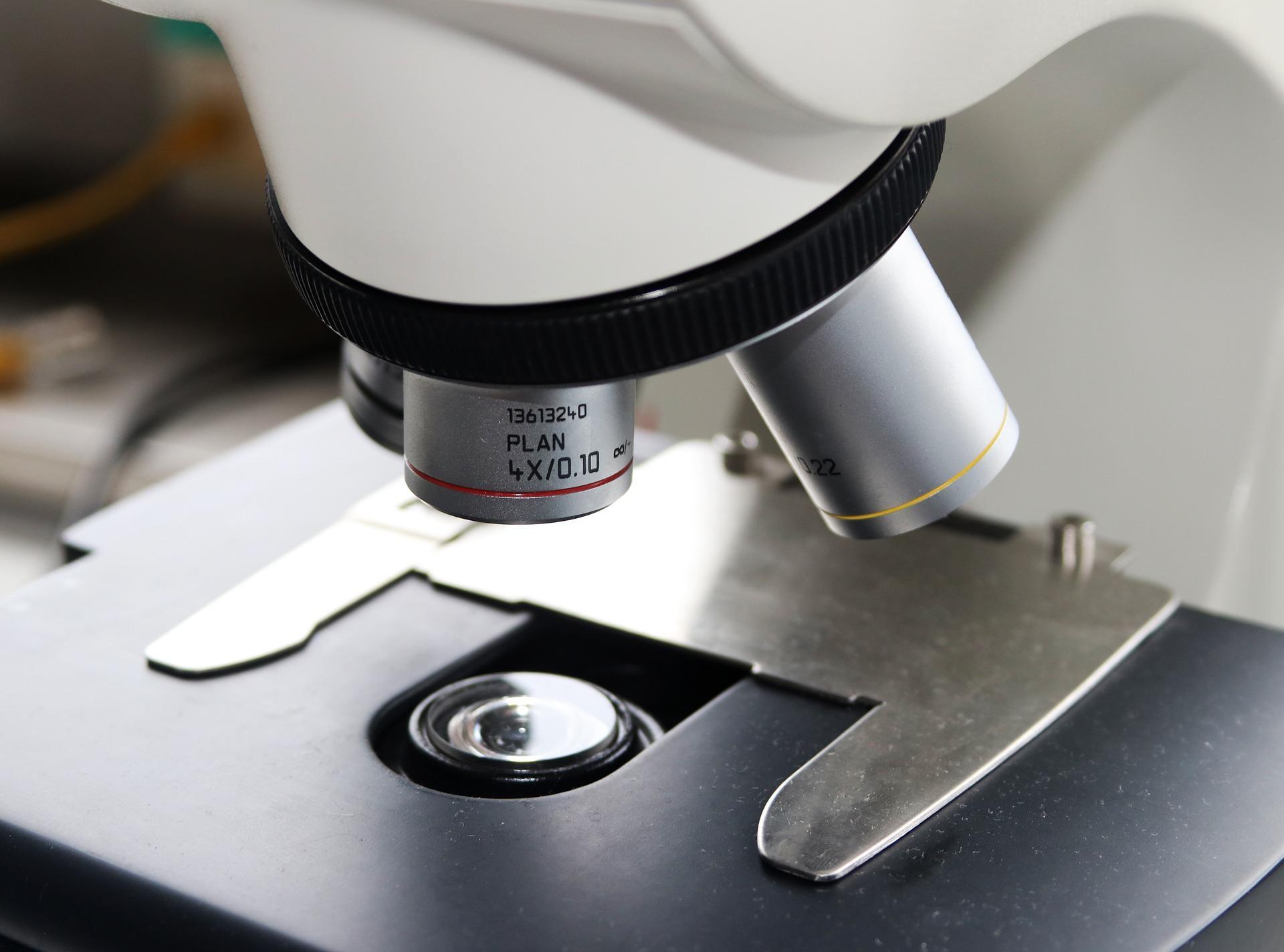 В России открыли революционный антибиотик, помогающий бороться с опухолями, бактериями и грибами