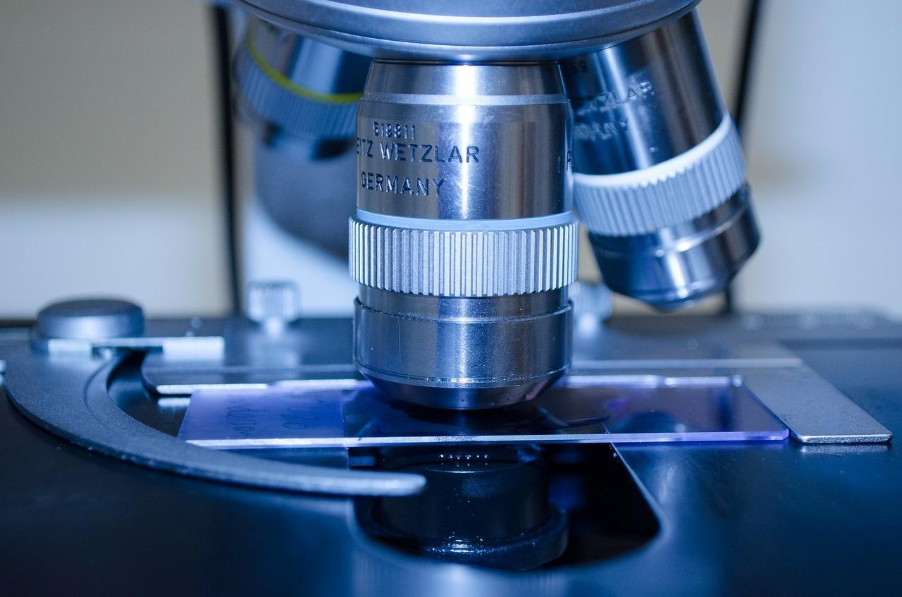Учёные нашли потенциальное лекарство против смертельной инфекции