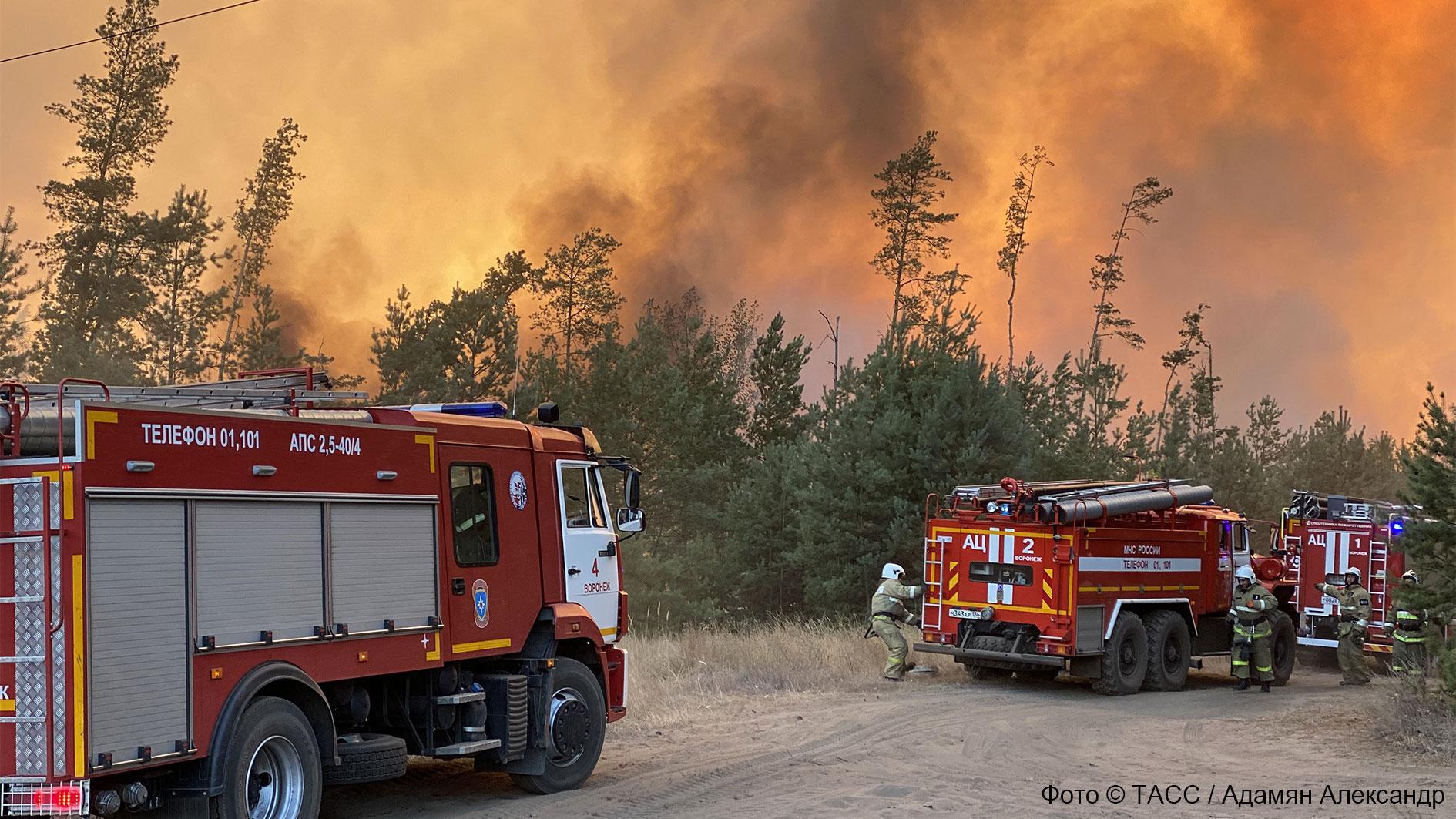 Нам чужого огня не надо. Как пожарные Воронежской и Белгородской областей спорили о горящих участках