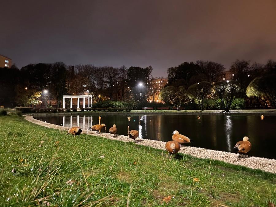 Широкоугольная камера. Ночной режим. Фото © LIFE / Денис Марков