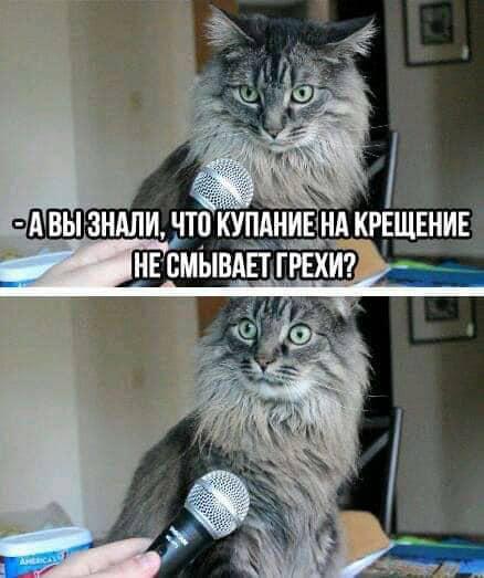 Фото © Facebook / Андрей Кураев