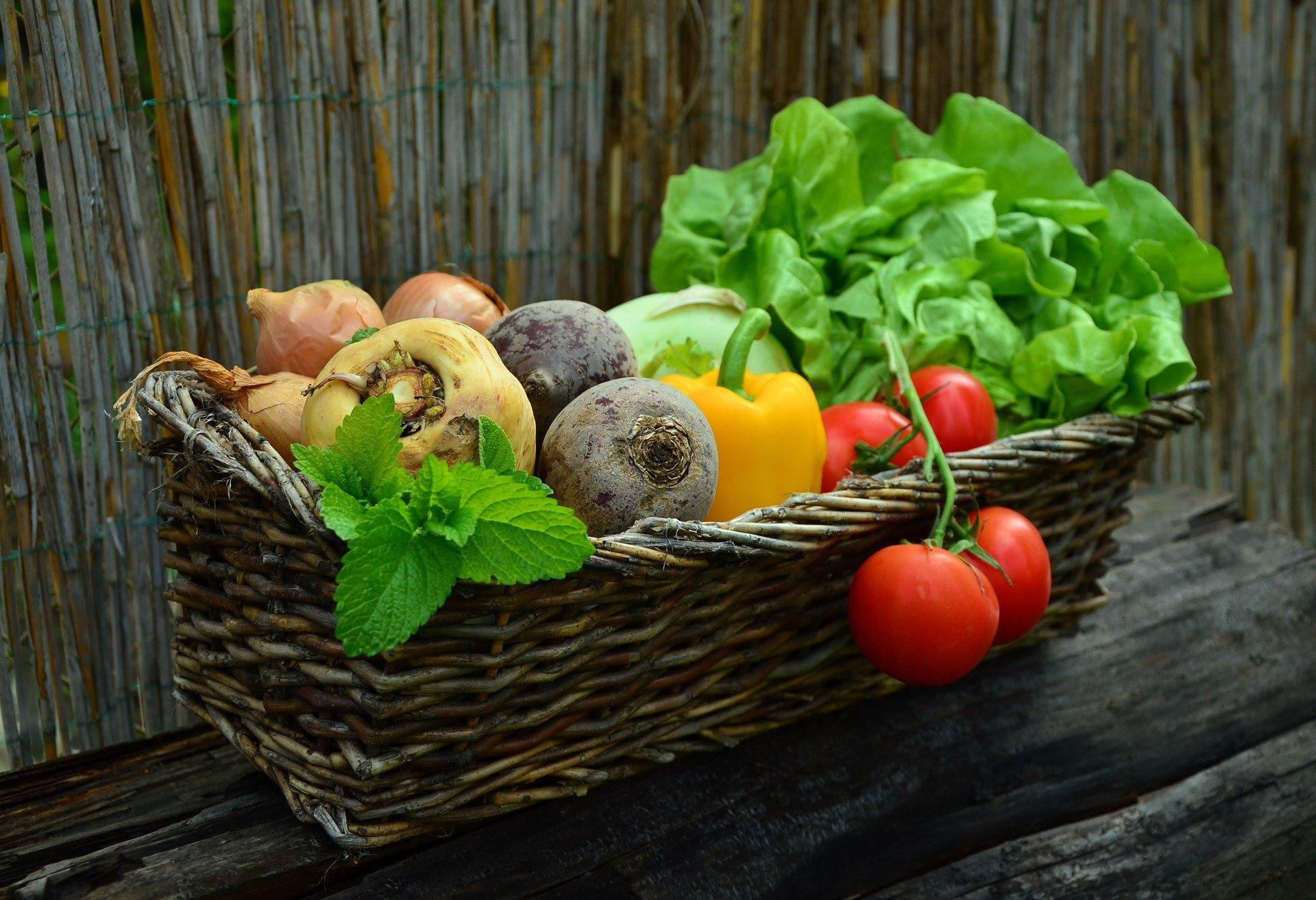 Врачи рассказали, какие витамины нужны организму зимой и где их найти