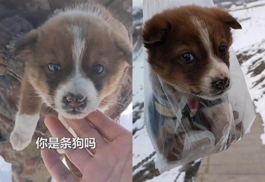Фото © Weibo / Chinese Military Net