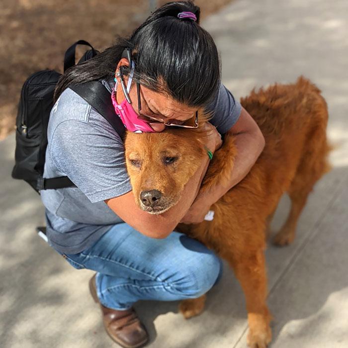Фото © Facebook / City of San Antonio Animal Care Services