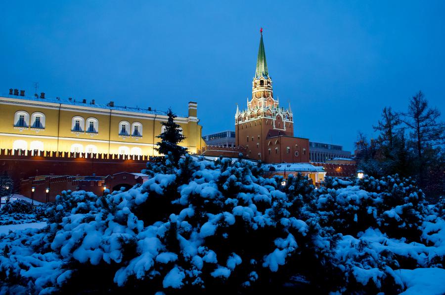 <p>Фото © Дмитрий Коробейников / ТАСС</p>