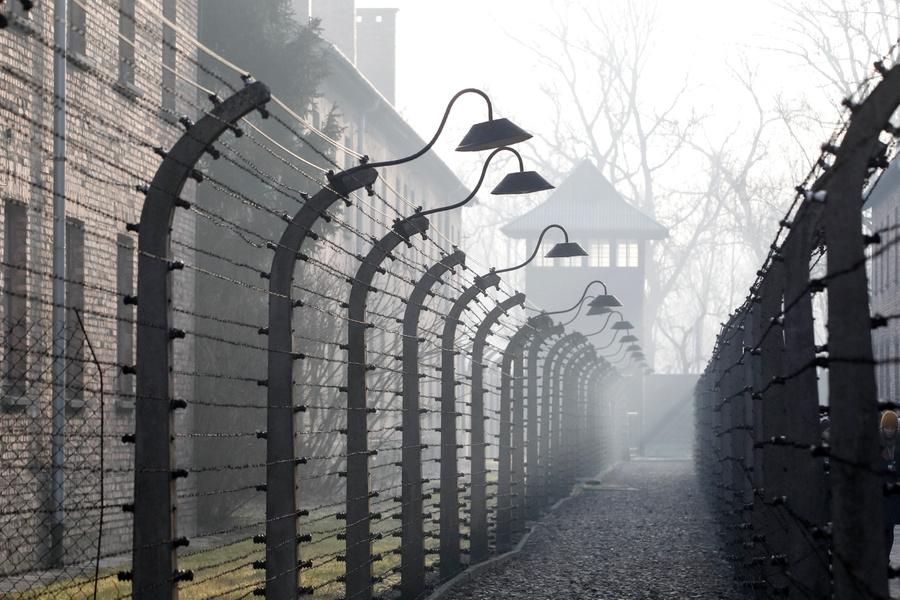 <p>Концлагерь Освенцим. Фото © ТАСС / AP</p>