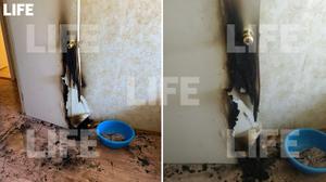 Подожжённая дверь в комнате, в которой играли выпавшие из окна девочки в Сызрани. Фото © LIFE