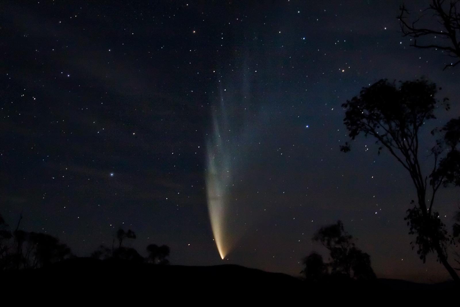 Комета Макнота в 2007 году. Фото © Wikipedia