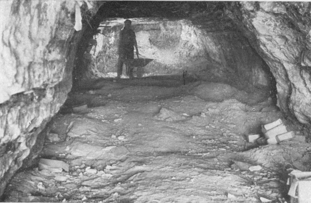 Пещера ужаса, 1961 год. Фото © Israel Exploration Journal