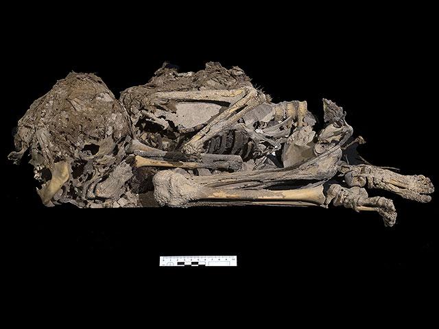 Останки ребёнка возрастом около 6 тысяч лет. Фото © Управление древностей Израиля