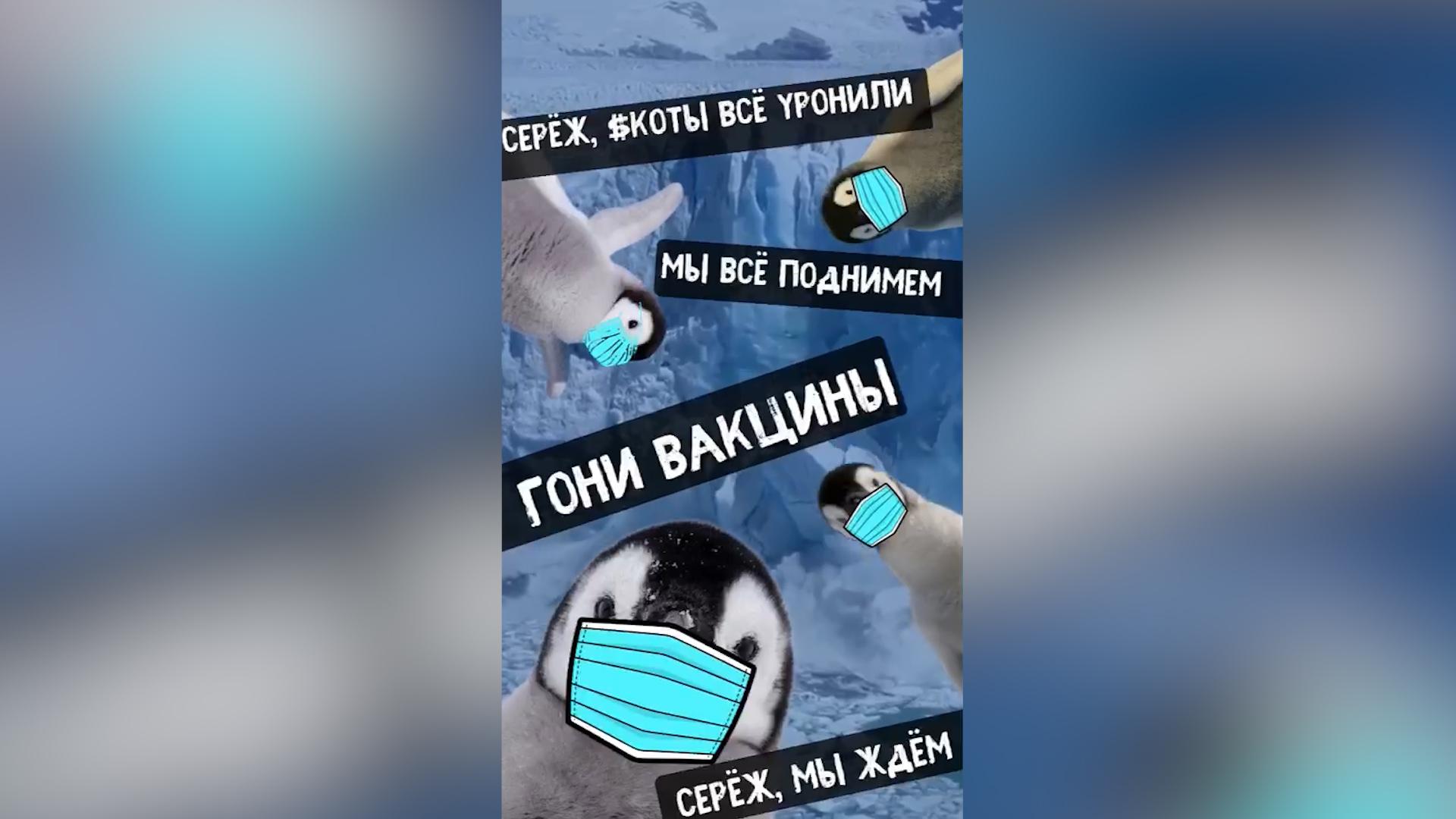 """201915777305.98254 МИД России спародировал известный мем """"Наташ, мы всё уронили"""" — видео"""