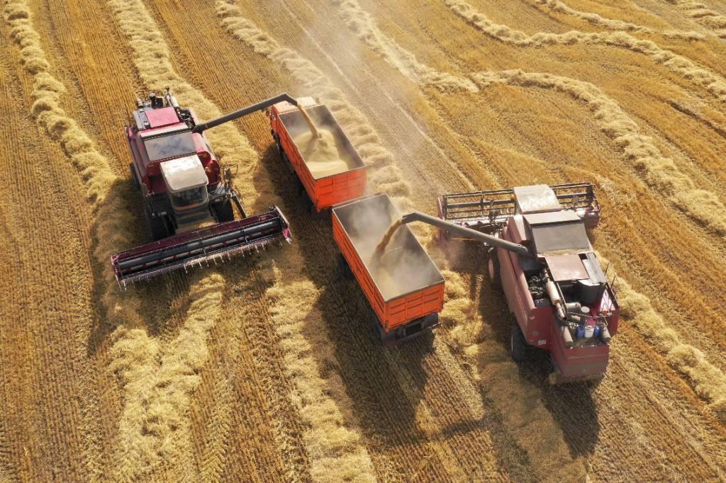Российские аграрии предупредили о сокращении посевов из-за нехватки мигрантов