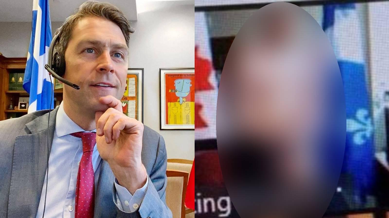 Депутат полностью разделся перед камерой, шокировав коллег, собравшихся на онлайн-заседании