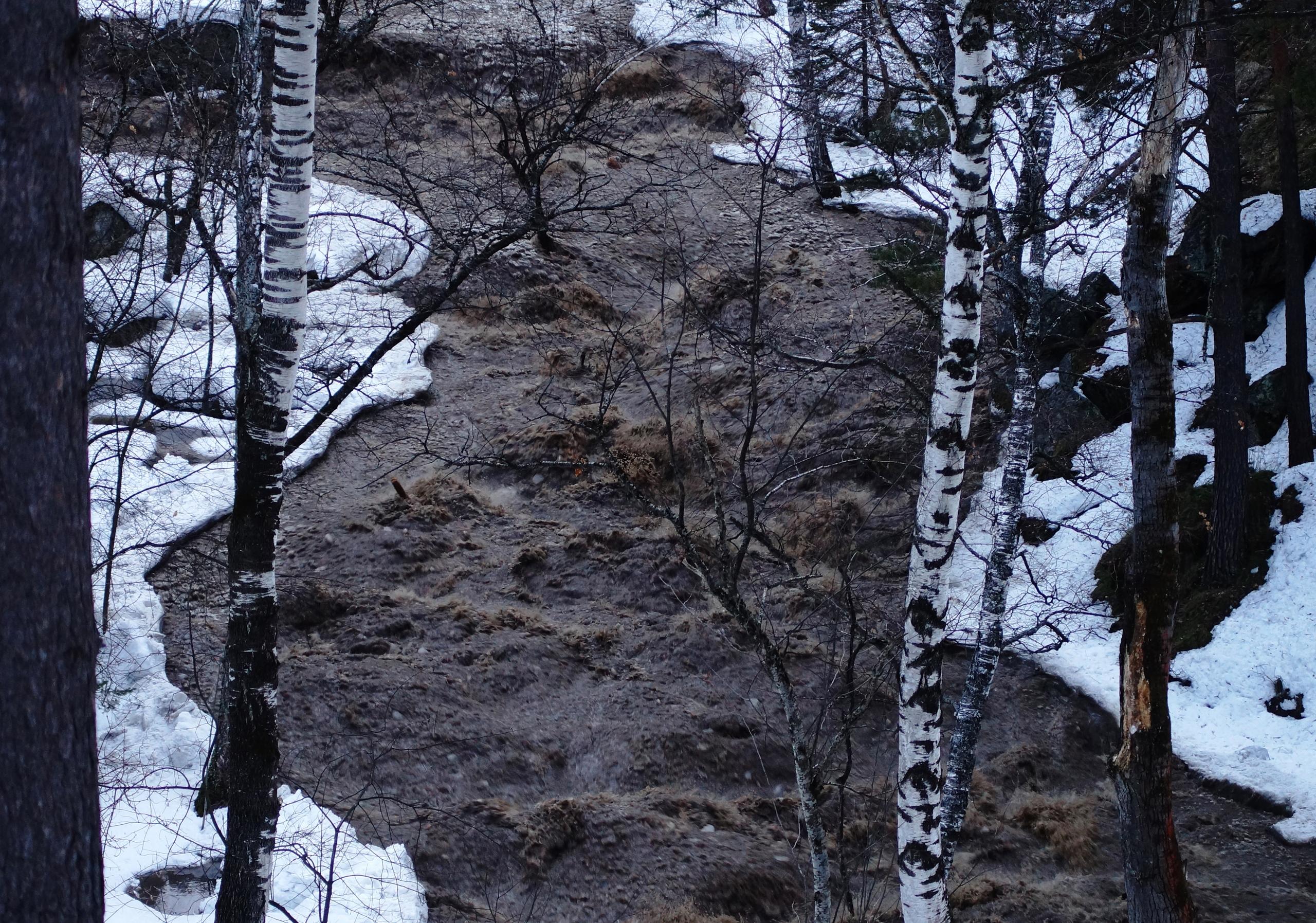 1307046709391.712 Бурный поток со снегом, льдом и брёвнами: очевидцы засняли эпичное вскрытие реки в Алтайском крае