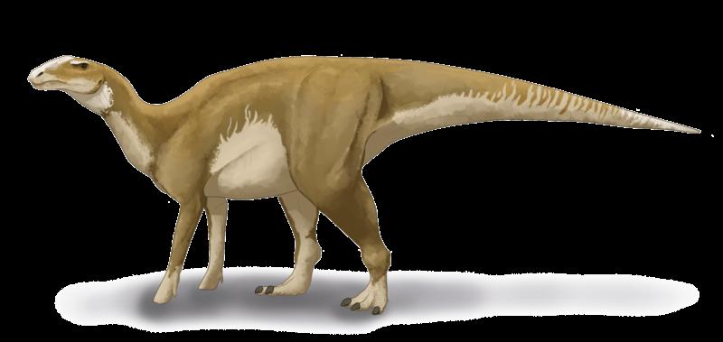 Реконструкция внешнего облика гадрозавра. Фото © Wikipedia