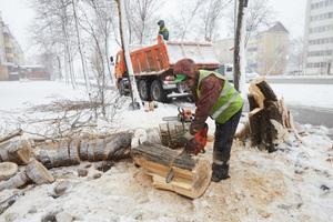 Фото © Администрация Южно-Сахалинска