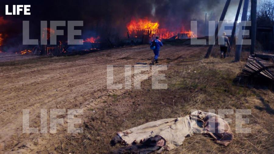 <p>Посёлок Дальний. Фото © LIFE</p>