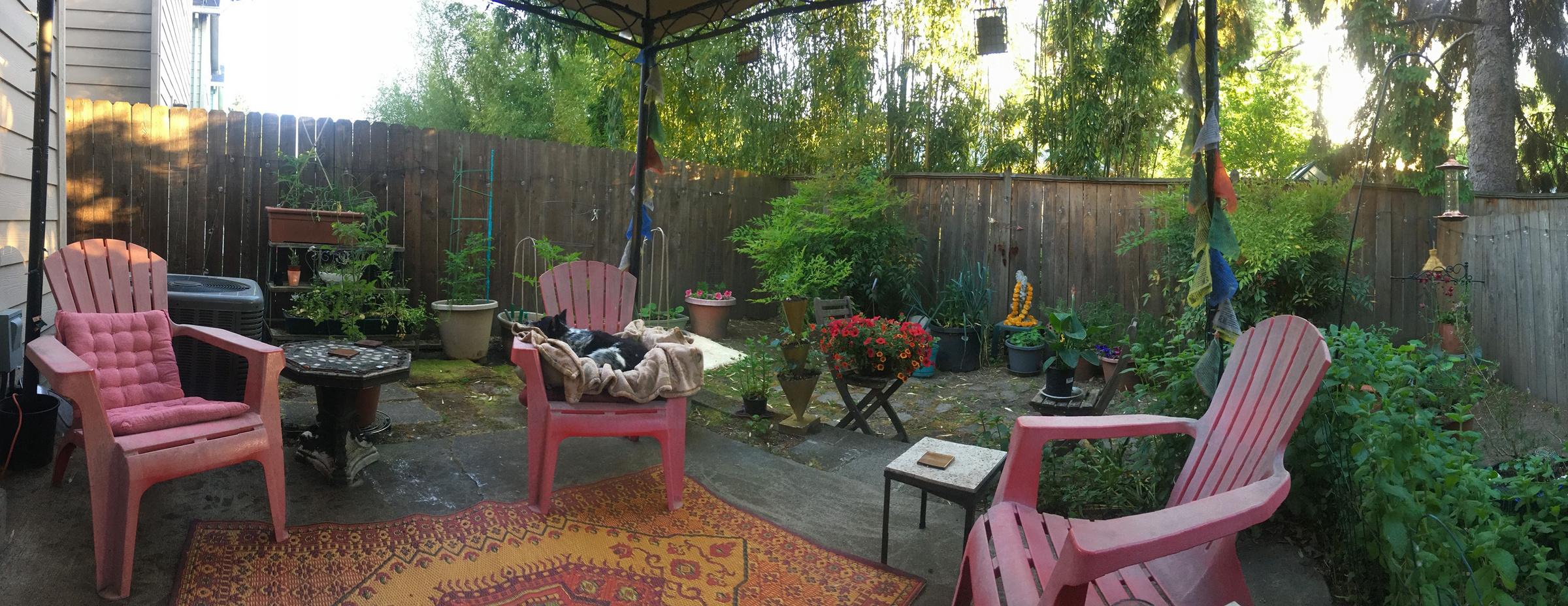 """Фото с заднего двора. Крис называет это """"офисом"""". Фото ©facebook.com/Evans Shades"""