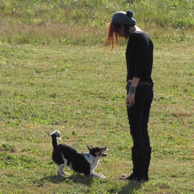 Эванс с собакой. Фото ©facebook.com/Evans Shades