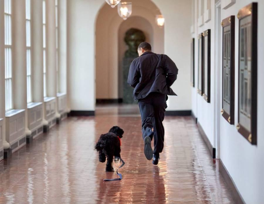 """<p>Фото © Twitter / <a href=""""https://twitter.com/BarackObama"""" target=""""_blank"""" rel=""""noopener noreferrer"""">Barack Obama</a></p>"""