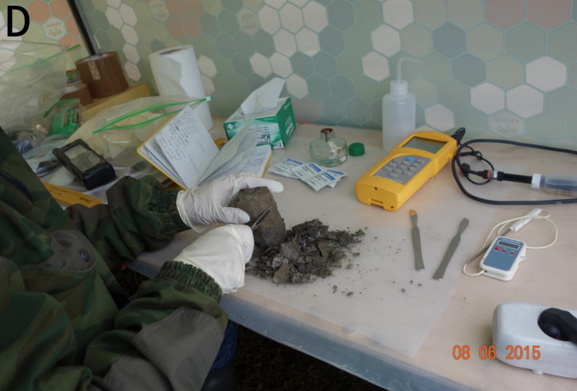 Обработка собранных проб древних мерзлотных отложений. Фото © Cell