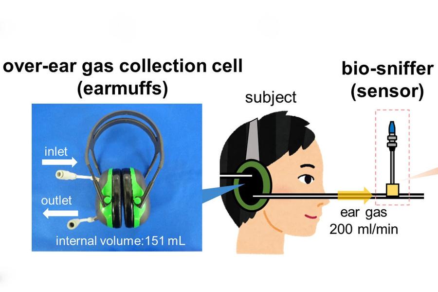 """Схема системы измерения содержания этанола в наушниках. Фото © Лаборатория """"Мицубиси"""", Токийский медицинский и стоматологический университет"""