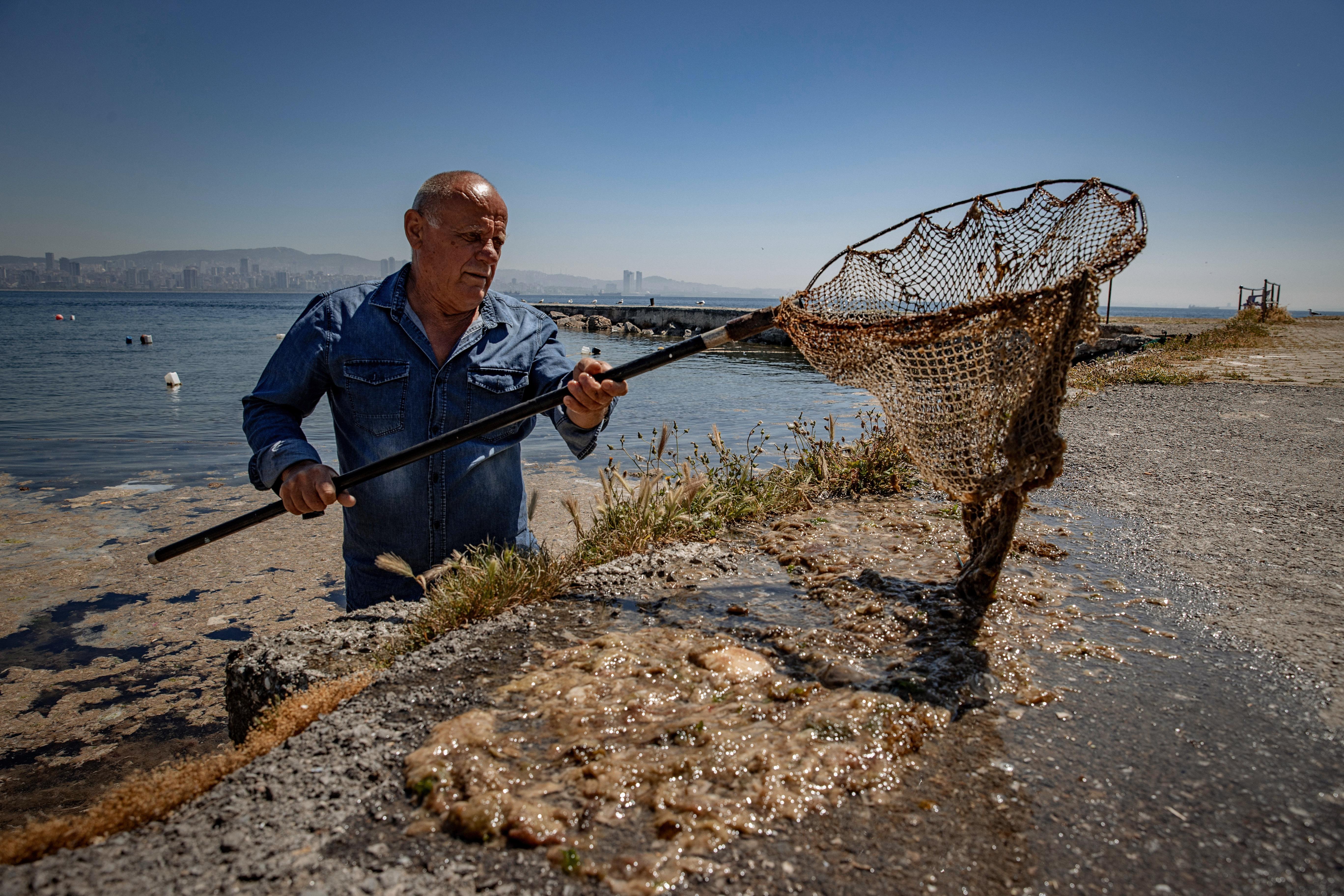 На Крым идёт слизь из Турции: Что будет с курортным сезоном на Чёрном море