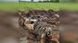 Поисковики в Сахалинской области обнаружили погибший истребитель. Фото © Instagram / sakhpoisk