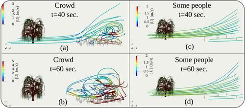 Распространение ивовой пыльцы в толпе (слева) и в небольшом скоплении людей (справа). Фото © Physics of Fluids