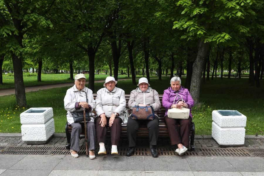 <p>Фото © ТАСС / Роман Пименов</p>