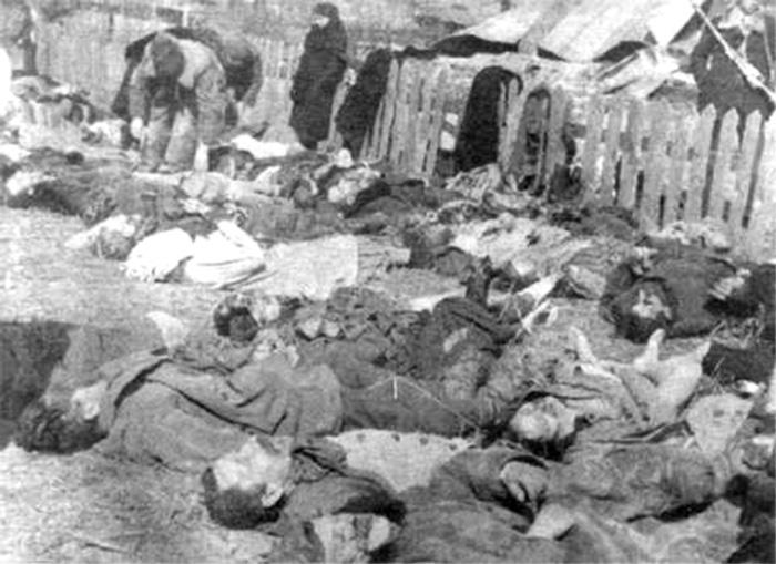 Луцкое воеводство. Свезённые на идентификацию и похороны трупы поляков — жертв резни, 26 марта 1943-го. Фото© wikipedia