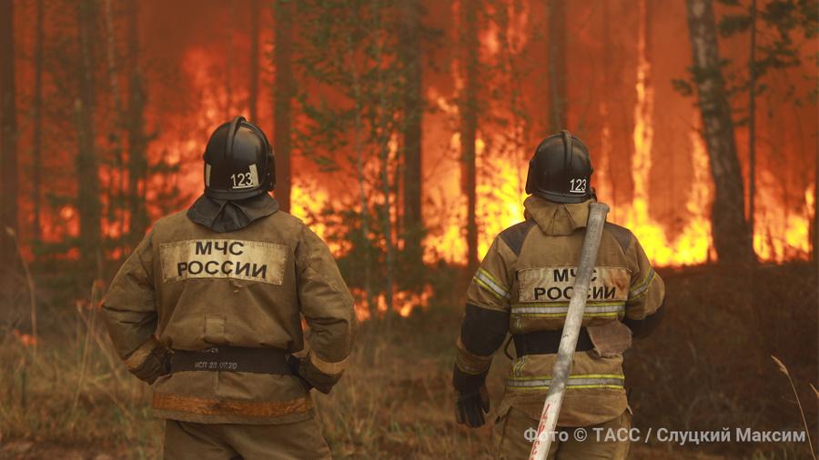 <p>Фото © ТАСС / Максим Слуцкий </p>